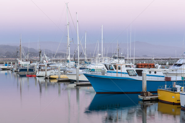 Pillar Point Harbor Dusk Stock photo © yhelfman