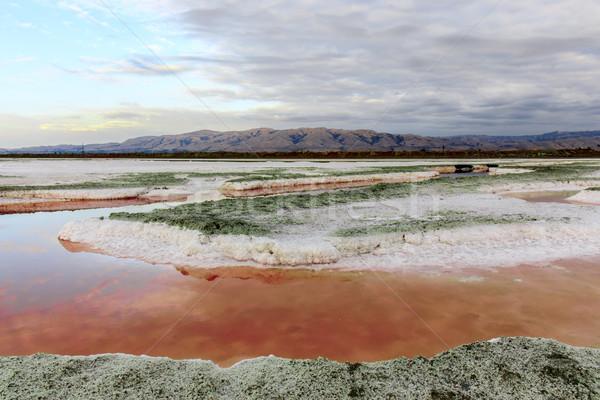 Colors of Salt Ponds. Stock photo © yhelfman