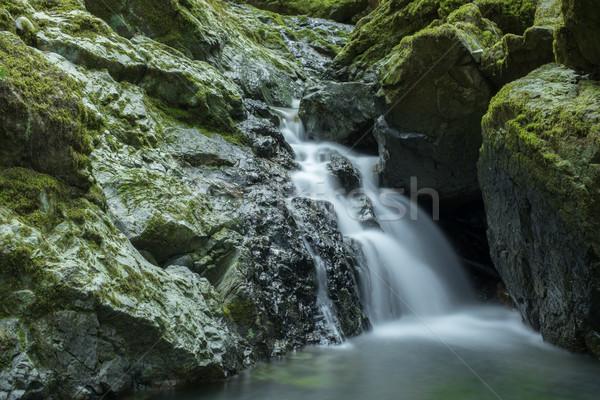çalışma su katarakt park Kaliforniya ABD Stok fotoğraf © yhelfman