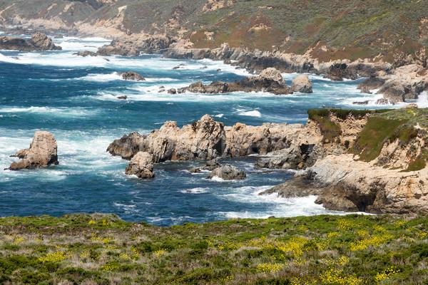 Garrapata State Park Coastal Views at Springtime. Stock photo © yhelfman