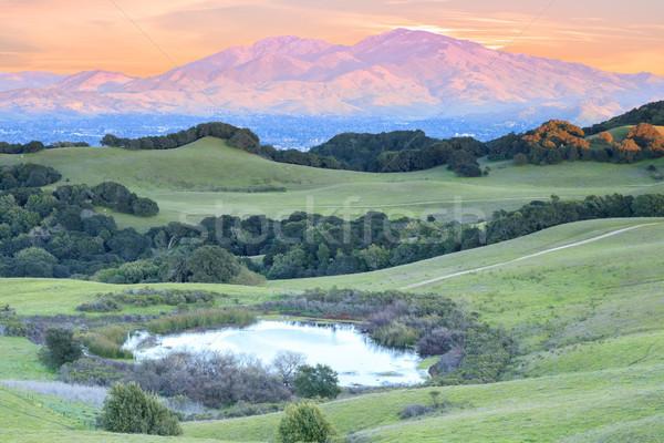 Coucher du soleil parc Californie USA arbre nuages Photo stock © yhelfman