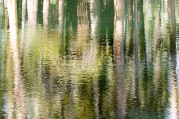 Wody jezioro California USA Zdjęcia stock © yhelfman