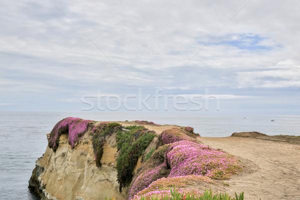 カラフル 崖 見える 海 サンタクロース ストックフォト © yhelfman