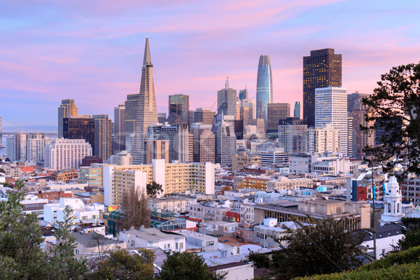 San Francisco Skyline in Pink and Blue Skies Stock photo © yhelfman