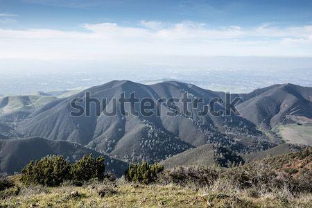 águila parque California paisaje Foto stock © yhelfman