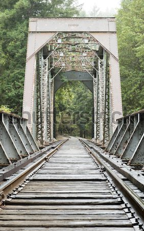 Old Train Trestle Bridge Stock photo © yhelfman