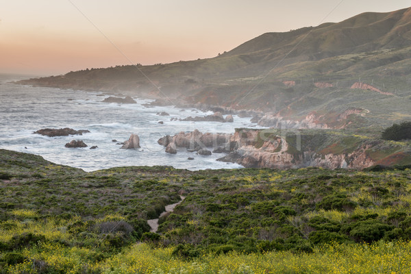 Rugged Coastline Sunset of Carmel-By-The-Sea. Stock photo © yhelfman