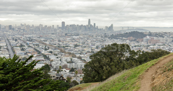 View of San Francisco Downtown from Bernal Heights Park Stock photo © yhelfman
