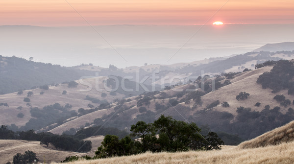 Sunset over San Francisco South Bay Stock photo © yhelfman