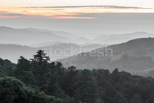 Russian Ridge Santa Cruz Mountains Rolling Hills Sunset Stock photo © yhelfman
