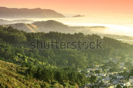 Milagra Ridge Coastal Sunset Views. Stock photo © yhelfman