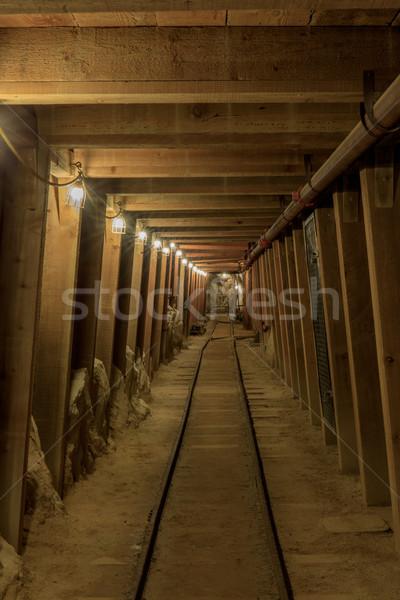 Inside Hazel-Atlas Mine in Black Diamond Regional Preserve. Stock photo © yhelfman