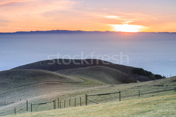 Silicon Valley Views from Sierra Vista Open Space Preserve. Stock photo © yhelfman