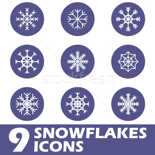 Hó ikonok háló ikon szett izolált fehér Stock fotó © ylivdesign