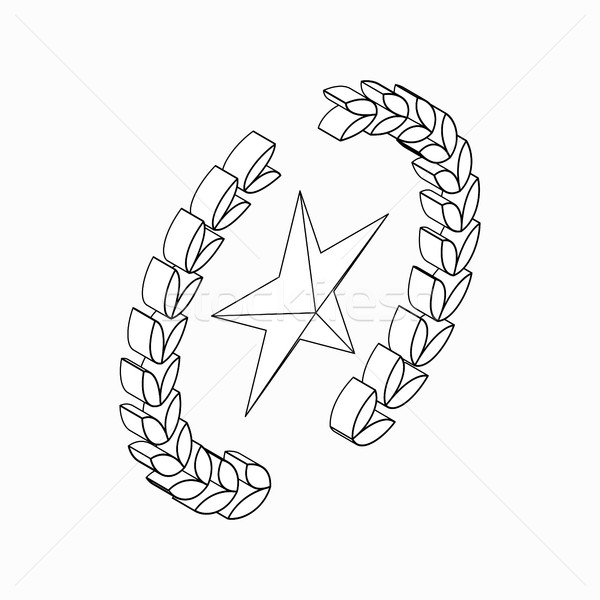 Laurel wreath with star icon, isometric 3d style Stock photo © ylivdesign