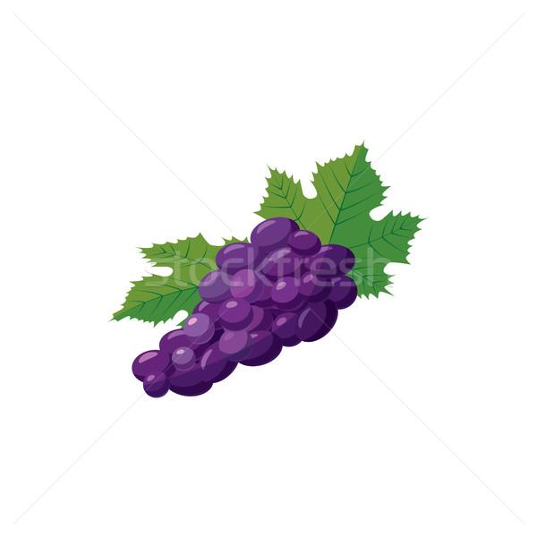 Köteg kék szőlő ikon rajz stílus Stock fotó © ylivdesign