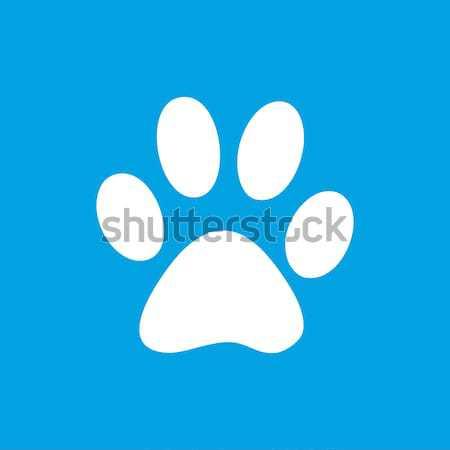 Pata blanco icono web aislado azul Foto stock © ylivdesign