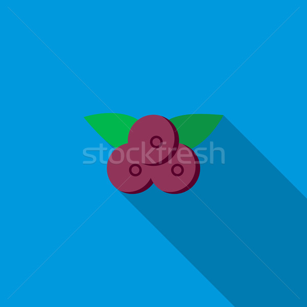 Bilberry icon, flat style Stock photo © ylivdesign