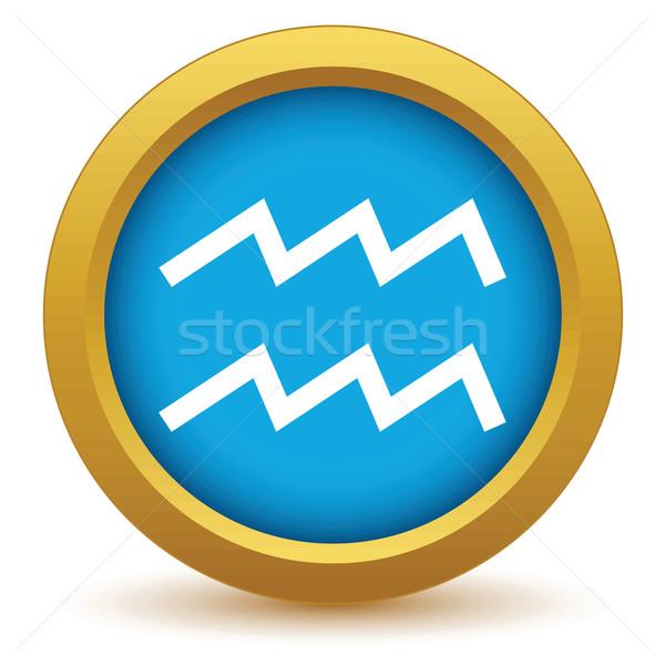 Gold Aquarius icon Stock photo © ylivdesign