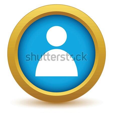 Gold user profile icon Stock photo © ylivdesign