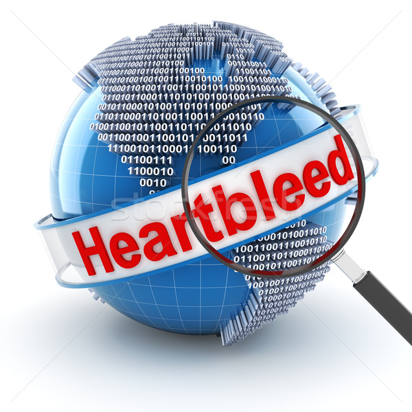 Heartbleed bug with digital globe and magnifying glass Stock photo © ymgerman