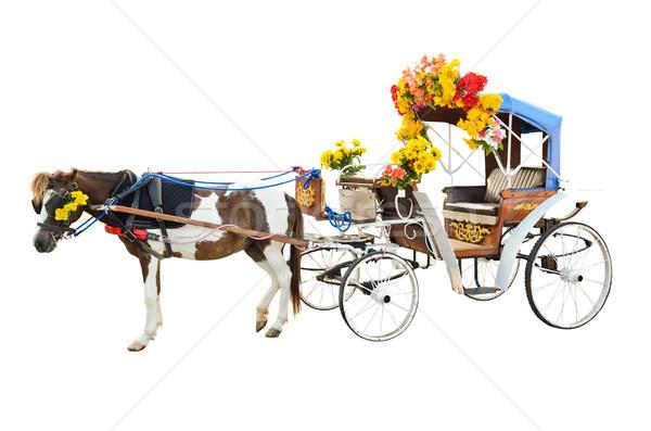 馬 孤立した 白馬 観光 サービス タイ ストックフォト © Yongkiet