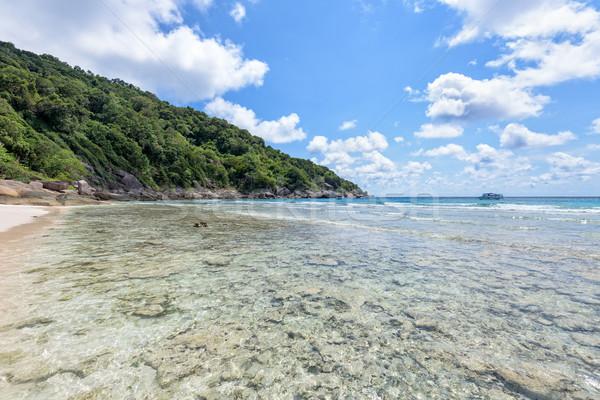Part korallzátony szigetek Thaiföld tájkép gyönyörű Stock fotó © Yongkiet