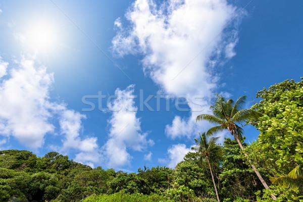 égbolt szigetek Thaiföld gyönyörű magas kilátás Stock fotó © Yongkiet