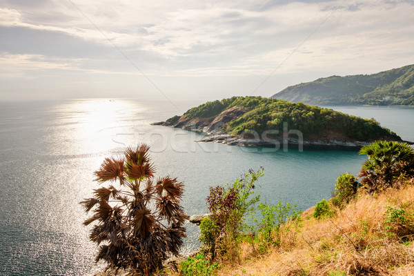 High angle view island and sea at Laem Phromthep scenic point Stock photo © Yongkiet