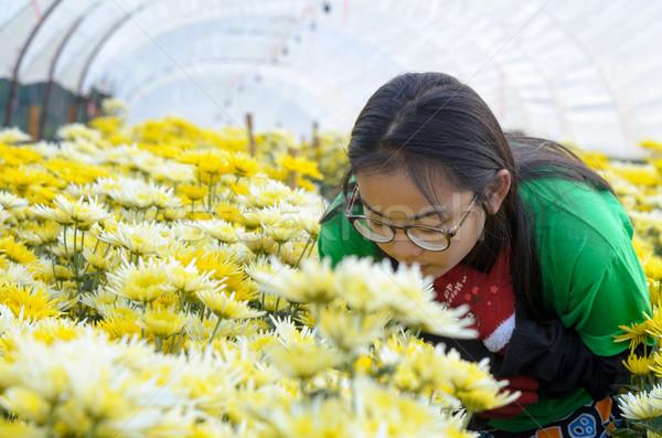 Girl in the flower garden Stock photo © Yongkiet