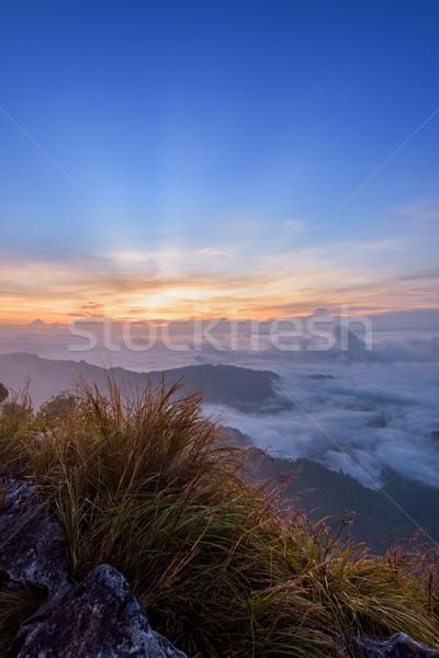 Zonsopgang bos park Thailand mooie landschap Stockfoto © Yongkiet