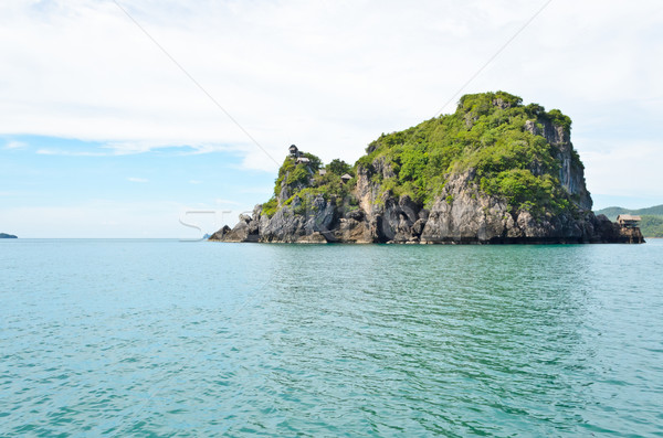 Islands for swallow nest harvesting in the sea Stock photo © Yongkiet