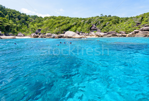 Tourists snorkeling at the Similan Islands in Thailand Stock photo © Yongkiet