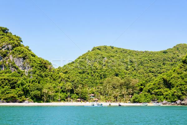 Eiland mooie natuurlijke landschappen strand Stockfoto © Yongkiet