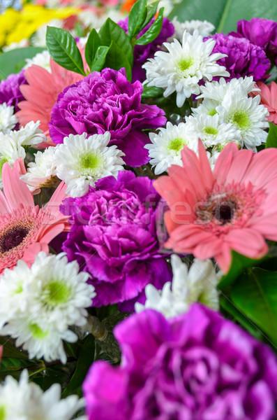 Colorido flores buquê cravo roxo decorado Foto stock © Yongkiet