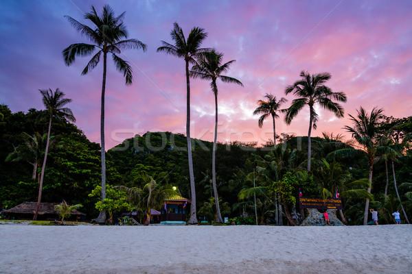 Zonsondergang eiland mooie natuurlijke landschap kokosnoot Stockfoto © Yongkiet