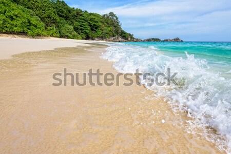 Praia ondas parque Tailândia belo paisagem Foto stock © Yongkiet