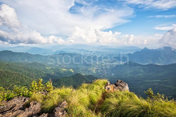 Landscape on Phu Chi Fa Forest Park Stock photo © Yongkiet