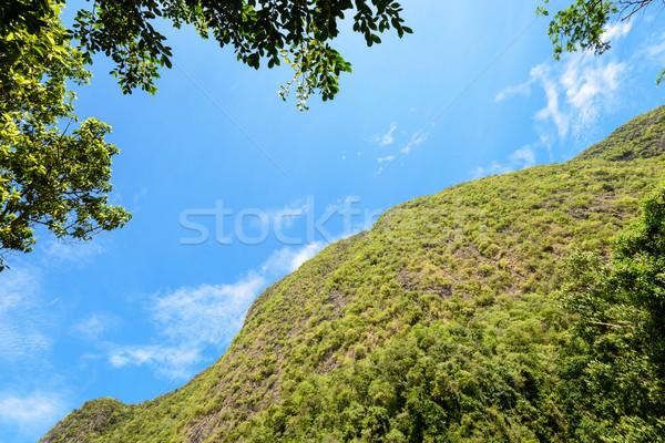 Ant widoku górskich wysoki niebo turystycznych Zdjęcia stock © Yongkiet