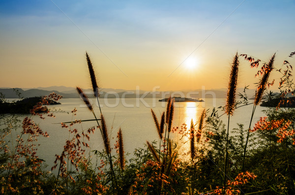 High angle view beautiful lake at sunset Stock photo © Yongkiet