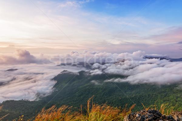 Charakter Świt górskich Tajlandia piękna krajobraz Zdjęcia stock © Yongkiet