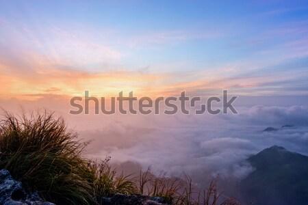 Sunrise on Phu Chi Fa Forest Park, Thailand Stock photo © Yongkiet