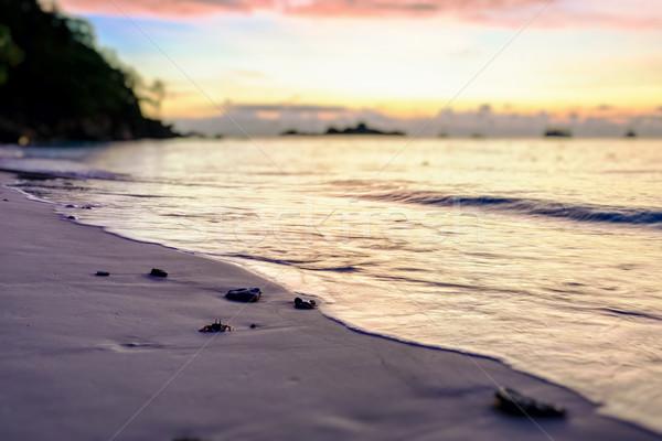 Stok fotoğraf: Bulanıklık · gündoğumu · plaj · güzel · renkler · sabah