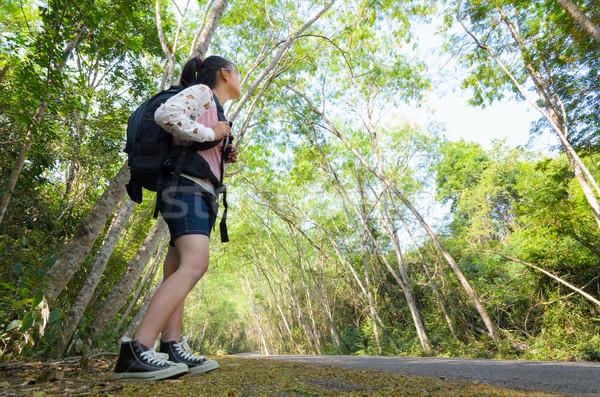 Uzun yürüyüşe çıkan kimse orman genç kız bakıyor doğal yürüyüş Stok fotoğraf © Yongkiet