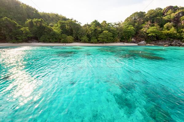 Balayı plaj ada Tayland güzel yeşil Stok fotoğraf © Yongkiet