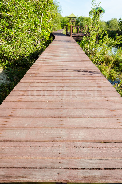 Fa híd fából készült természet tanulás roi Stock fotó © Yongkiet