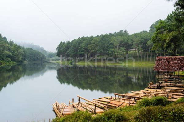 Sal bambu göl çam orman sabah Stok fotoğraf © Yongkiet
