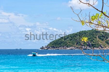 синий морем Таиланд красивой природного пейзаж Сток-фото © Yongkiet