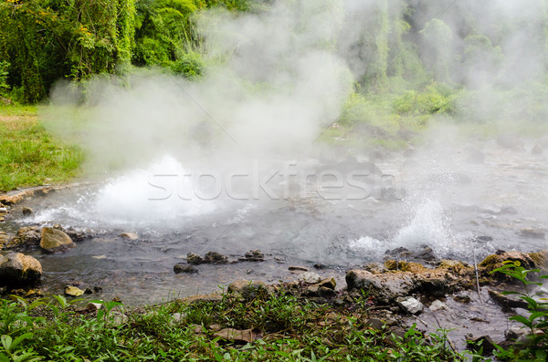 Spring of naturally hot water Stock photo © Yongkiet