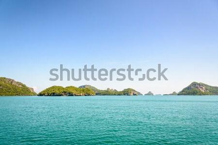 Correia ilha belo naturalismo paisagem mar Foto stock © Yongkiet